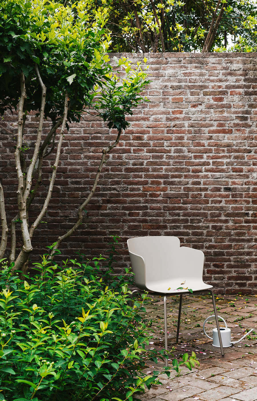 Chaise outdoor Calla