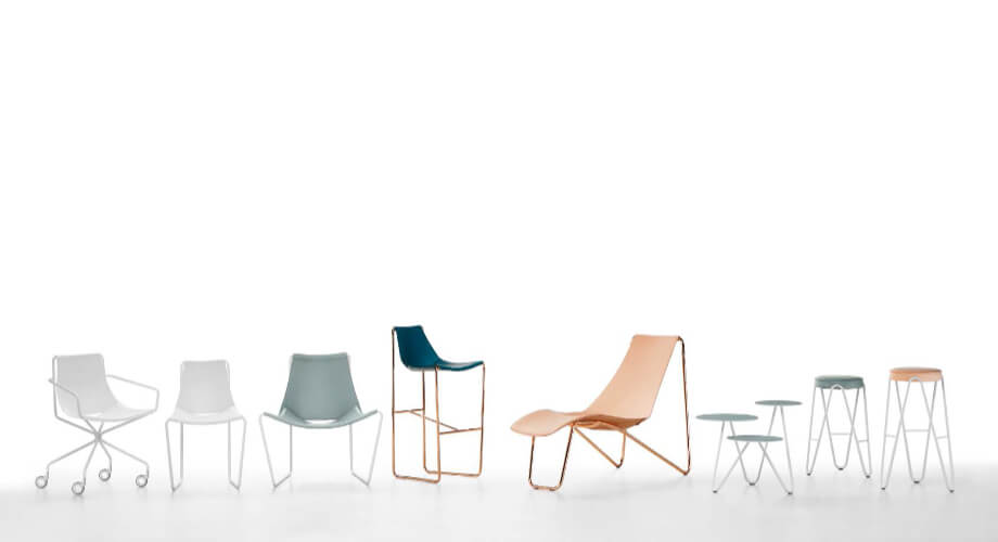Apelle collection