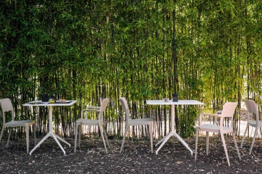 Nenè outdoor chair with armrests made of polypropylene