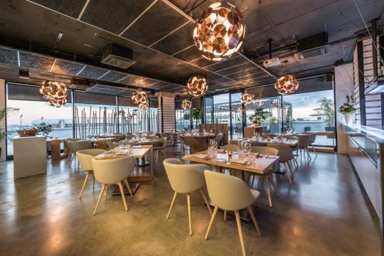 Sedie di design per ristoranti